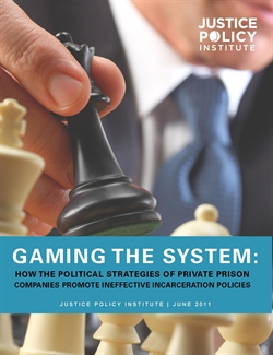 Gaming_the_system-cover-full