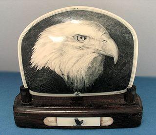 Eagle-head2