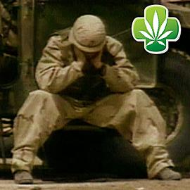 Ptsd-cannabis-fix