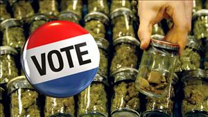120831122320_marijuana_vote