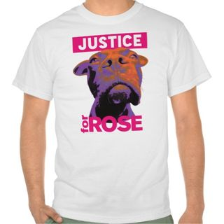 Justice_4_rose_tshirt-rf92764868c3241a48727a11177e14794_804gy_512