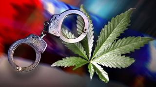 Marijuana-Pot-arrest