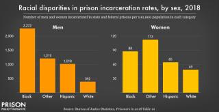 Prisonratesbyracesex2018